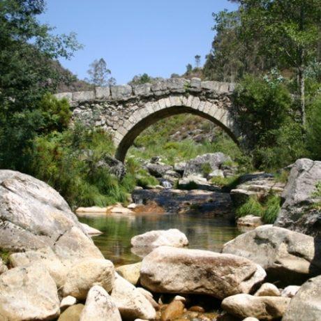 ponte-rio-ave.jpg